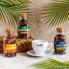 AFTER COFFE zestaw 3 herbat + filiżanka GRATIS