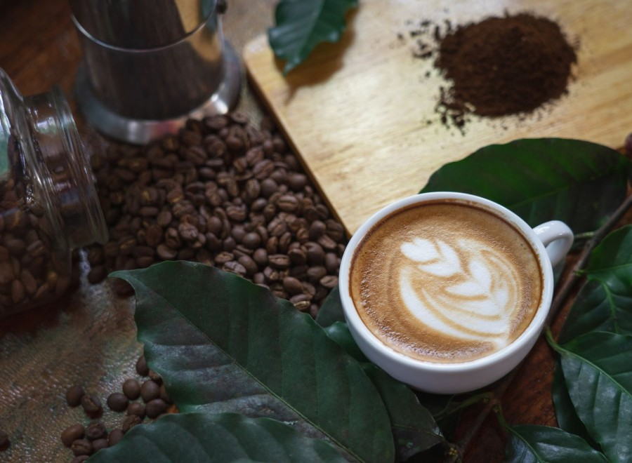 Kawa organiczna – czym kawa bio różni się od klasycznej?