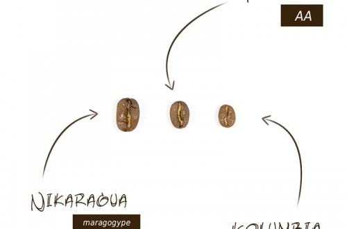 Klasyfikacja ziaren kawy