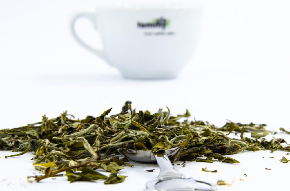 Biała herbata – właściwości i parzenie