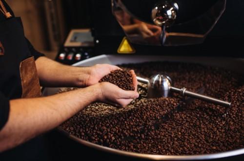 Kto wypala ziarna kawy? Poznaj zawód roastera