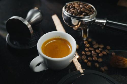 Czym charakteryzuje się kawa specialty?